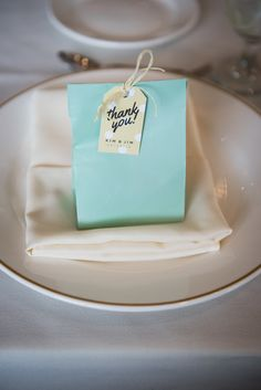 Mint Bag Favor Bags | Metts Photo https://www.theknot.com/marketplace/metts-photo-oak-park-il-767106 |