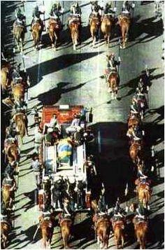 Ayrton Senna's funeral, Gilles Villeneuve, Funny Pictures For Kids, F1 Racing, Car And Driver, Vintage Racing, Formula One, Grand Prix, Race Cars, Princess Diana