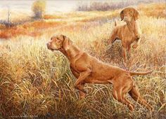 Vizsla Art .. Amazing Bird Dogs