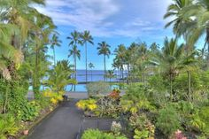 House in Hilo, United States. Across from Richardson's Beach Park.  The best snorkeling on this side of the island.  Enjoy black sand beaches, turtles, swimming.  Equipment provided complimentary.  In Hilo on South side of Hlo Bay. $25/day upcharge for guests above 4.  House i... - Get $25 credit with Airbnb if you sign up with this link http://www.airbnb.com/c/groberts22