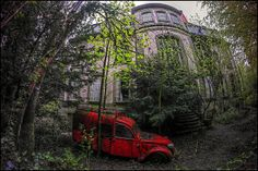 Death of a French Garden | Flickr -Chateau Lumiere [FR] The overgrown back garden of the abandoned Chateau Lumiere, deep in the French mountains.
