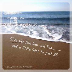 Sun Sea, Sand