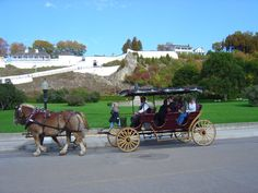 View the magnificent Mackinaw City, Michigan aboard a horse drawn carriage. The ride will introduce you to the beauty of Mackinac Island, Michigan.