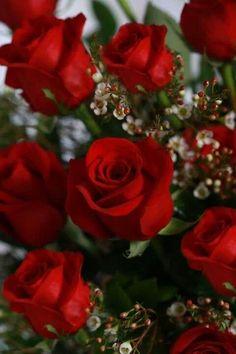 Cualquier ocasión y excusa es buena para regalar rosas rojas!!! <3<3<3