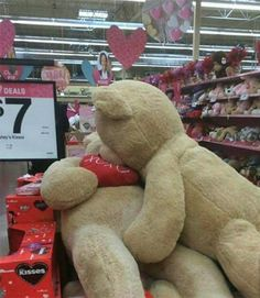 Big Teddy Bear Walmart July 2017