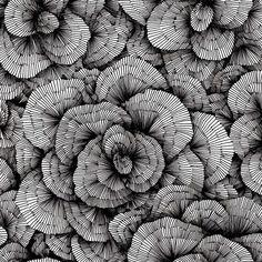Amazing hand-drawn organic patterns by vasilj godzh, via behance. Graphic Design Pattern, Graphic Patterns, Line Design Pattern, Texture Drawing, Line Drawing, Line Patterns, Textures Patterns, Organic Patterns, Motifs Organiques