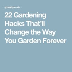 22 Gardening Hacks That'll Change the Way You Garden Forever