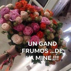 Floral Wreath, Romantic, Vegetables, Decor, Floral Crown, Decoration, Vegetable Recipes, Romance Movies, Decorating