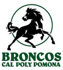 Image result for california state polytechnic university pomona