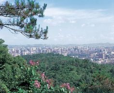 Magnificent views from the top of Baiyun Mountain. #treasuredtravel