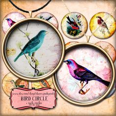 VINTAGE BIRDS 1 inch circle digital downloads, collage sheet, for pendants, magnets, scrapping, craft supply.    This product is a VINTAGE BIRDS digital collage sheet, embelished with classic bird illustrations and ephemeral textures.     Each circular design is 1inch in diameter. There is also an A4 jpg collage sheet featuring all the designs for printing them all at the same time! They are perfect for scrap booking, collage art , pendants and magnets. $3