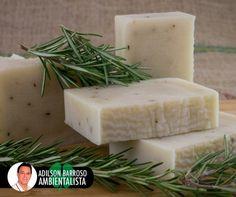 Aprenda a fazer sabonete de alecrim e previna-se de infecções, feridas e envelhecimento da pele