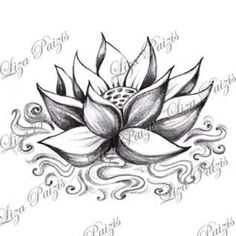 Lotus with water tattoo design by Liza Paizis original lotus shaded black and gr. - Lotus with water tattoo design by Liza Paizis original lotus shaded black and gray drawing - Hand Tattoos, Star Tattoos, Celtic Tattoos, Body Art Tattoos, Sleeve Tattoos, Buddha Tattoos, Tattoo Ink, Arm Tattoo, Spine Tattoos
