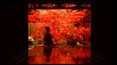 (SDRSP) Sakuran 2006 (dir. Mika Ninagawa) Rated 15 - (Masterpiece)