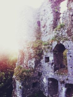 Castletroy, County Limerick, Ireland  Beautiful! Can't wait to go back someday