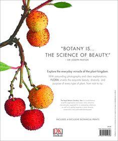 Flora: Inside the Secret World of Plants Hardcover – October