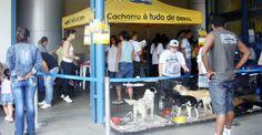 Feira de adoção de animais acontece dia 29 de junho no Internacional Shopping Guarulhos  http://www.guarulhosonline.com/noticias/sociedade/animais/feira-de-adocao-de-animais-acontece-dia-29-de-junho-internacional-shopping-guarulhos/