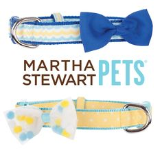 #MarthaStewartPets dog collars - perfect spring colors! Get yours @petsmartcorp