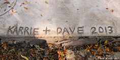 http://davewirth.blogspot.com/2013/11/the-3-year-drainage-project.html     Fix concrete slab over gutter drain