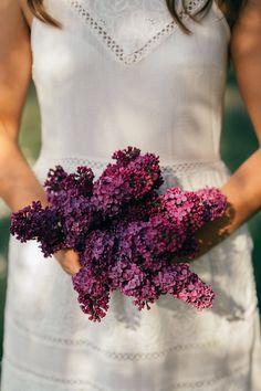 Violetter Flieder. Einfach wunderschön! Foto Art, Portrait Photography, Lilac, Switzerland, Photo Shoot, Simple, Nice Asses