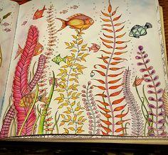 #LostOcean #Fish  #Johannabasford #Adultcoloring
