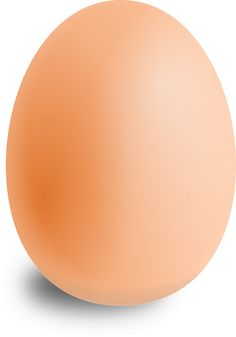 Free Vector Graphic: Egg, Oval, Food, Round - Free Image on Pixabay - 157224