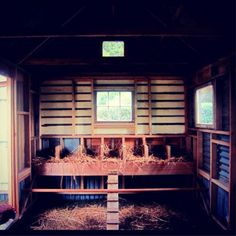 Amazing chook house / great chicken coup / hen house!