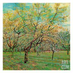 Verger Avec Pruniers En Fleurs Art Print by Vincent van Gogh at Art.com