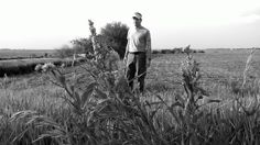 Mike Bettes in a soybean field.