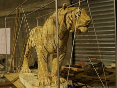 TIGRES UANL EL TIGRE MONUMENTO ESCULTURA MONTERREY, TIGERS, THE TIGER MONUMENT SCULPTURE. Juan Canfield, escultor, sculptor (0052)55 4597 44 27 www.casacanfield.com