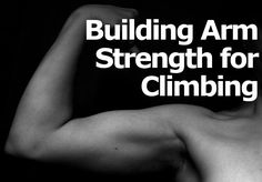 Having a well balanced overall strength is essential for climbing. Having strong arms is favorable to good technique. You don't want to be stuck in a situation where you can't perform the next move because you don't have the arm strength to