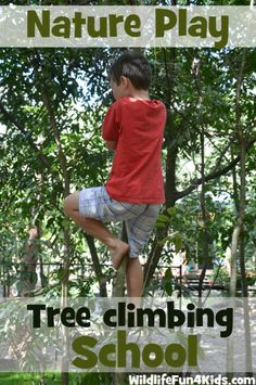 Tree Climbing School - Tips to get your child climbing a tree (for less confident children)  #natureplay