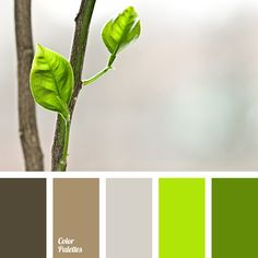 Nice fresh color gamma is like young spring sprouts of a luscious greenery. Bright light green and emerald green fill the palette with energy and vitality. Green Colour Palette, Green Colors, Brown Color Schemes, Color Balance, Design Seeds, Green And Brown, Gray Green, Bright Green, Dark Brown