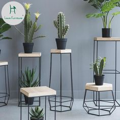 Decorate your home in class modern nordic style with the delightful Nico iron frame geometric side table! Perfect for displaying indoor plants or photo frames. Made from metal. Free Worldwide Shipping & Money-Back Guarantee Decorating Your Home, Diy Home Decor, Room Decor, Geometric Side Table, Modern Side Table, Metal Side Table, Indoor Flowers, Indoor Plants, Hanging Plants