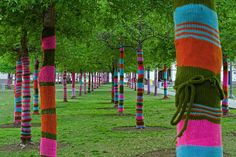 knit-wrapped-trees-by-knitta-please-photo-by-shawn-thomas