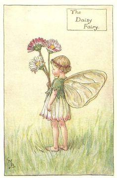 http://www.wellandantiquemaps.co.uk/lg_images/The-Daisy-Fairy.jpg