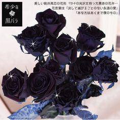 マミーローズ Yahoo!店 - 本数を選べる黒バラの花束 誕生日やお祝い、記念日に年齢分の本数でプレゼント ブラックローズ|Yahoo!ショッピング