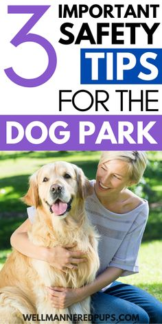 Important dog safety tips to know before heading to the dog park.