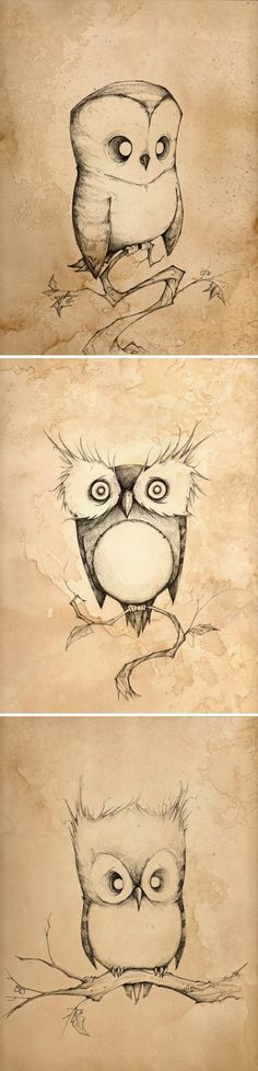 A series of silly, quirky owls by Christopher Uminga.