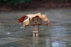 Danbo in the rain...