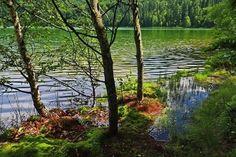 'Szeklerland'  Regards @ Fodorfoto  Szent Anna tó - Lacul Sfânta Ana    #nikon #photography #nature #mik #magyarig #ig_hun #travel #beautifuldestinations #instatravel #travelgram #travelphotography #instagood #traveldiary #photooftheday #travelholic #summervibes #mik_nyar #ig_europe #ig_europa #igworldclub #voyaged #adventure #ig_europe #europe_perfection #ig_transylvania #lonelyplanet #transylvaniablog #erdély #tansylvania #bbctravel Nikon Photography, Travel Photography, Europe Europe, Lonely Planet, Summer Vibes, Exploring, Natural Beauty, Anna, Adventure