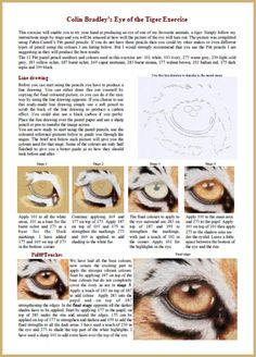 Colin Bradley's pastel pencil art exercise sheet