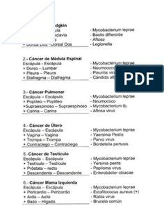 Adelgazar significado em portugues