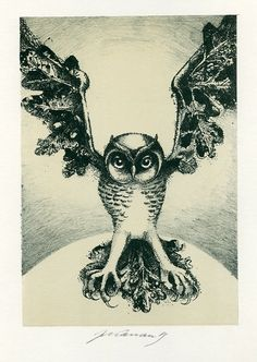 Owl, Czech Ex libris by Jan Kavan