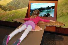 Lindsay Wildlife Museum in Walnut Creek Interactive Projection, Interactive Exhibition, Interactive Display, Interactive Media, Museum Exhibition Design, Design Museum, New Museum, Kids Museum, Articles For Kids