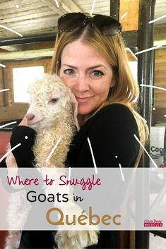 Where to Snuggle Baby Goats in Québec - CleverDever Wherever New Travel, Canada Travel, Travel Plan, Travel Advice, Travel Guides, Visit Canada, Canada Canada, Cutest Animals On Earth, Local Festivals