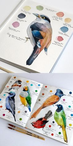Etsy Shop Feature on So Super Awesome #etsy #watercolor #birds #illustration #art #nature #sketchbook