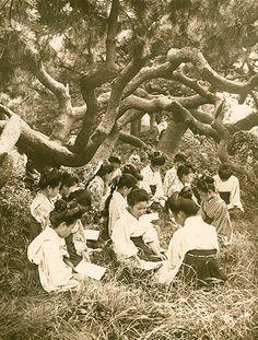 松の木陰でお勉強 | ナショナルジオグラフィック日本版サイト