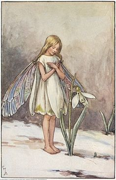 """❄Hiver❄ """"The snowdrop fairy"""" de Cicely Mary Barker (1895-1973) illustratrice britannique. Son premier recueil """"Flower Fairies of the Spring"""" est publié en 1923. D'autres livres suivront. Site de l'artiste : http://www.flowerfairies.com/"""