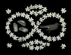 Narcissus Infinity ©2009 Portia Munson